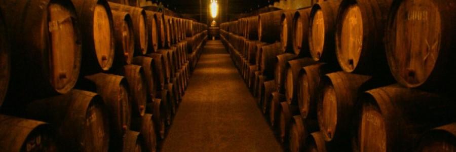 Wine tours - Taxi Serbia